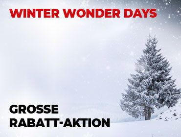 Winter Wonder Days - TONEART-Shop